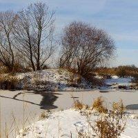 Зимнее озеро :: Оксана Лада