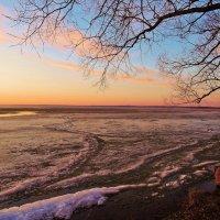 Ледяные волны на озере :: елена