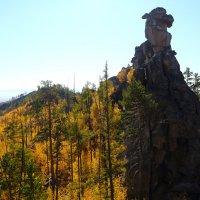 Каменная черепаха на вершине скалы. :: Александр Киргизов
