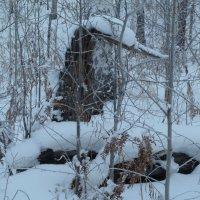 Зимой в лесу (гуси-лебеди) :: Галина