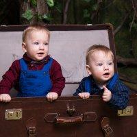 Двойняшки в чемодане :: Valentina Zaytseva