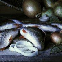 Улов. И рыбка неплохая - 35 см. длиной...! :: Валерия  Полещикова
