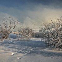 В морозный день на Ангаре... :: Александр Попов