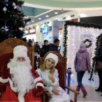 Дед Мороз устал позировать ))))) :: bemam *
