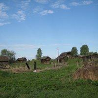 заброшенная деревня :: Алексей Хохлов