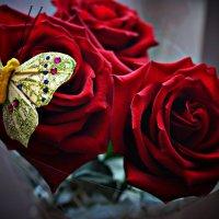 Розы :: Оля Грязнова