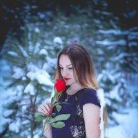 зимний ангел :: Сергей Водяной