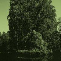 Зеленый мир :: Иван Миронов