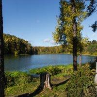 Красивая осень :: Владимир Безбородов