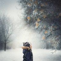 Зима :: Антонина Енгалычева
