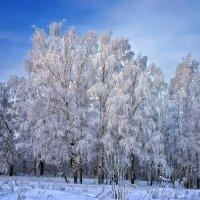 А в Москве - зима :: Андрей Левин