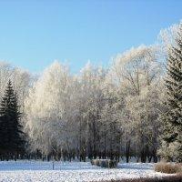Морозный денёк :: Galaelina ***