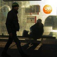 Мороз и солнце-2 :: Елена Жукова