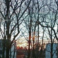 Из окна :: Натали Пам