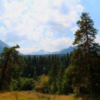 Верхний Архыз. Вид на Софийский хребет. :: Vladimir 070549