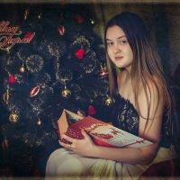 Новогодняя сказка :: Наталья