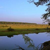 на реке :: оксана
