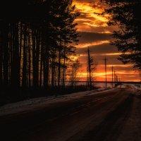 road :: Илья Матвеев