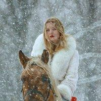 Наездница в красном платье на коричневом коне. :: Николай Нестеренко