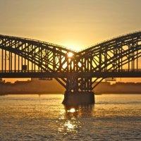 Финляндский мост над Невой :: Елена
