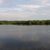 Озеро :: Алина Веремеенко