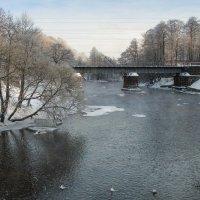 Зимний пригород 8 :: Виталий