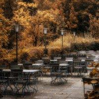 Autumn in October :: Dmitry Ozersky