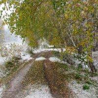 Первый снег в начале октября :: MaOla ***