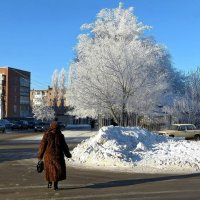 Прогулка по морозцу :: Татьяна Смоляниченко