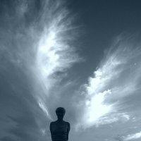 У людей тоже есть крылья, только немногие знают об этом... :: Taina Fainberg