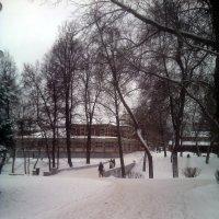 В городском парке :: Tarka