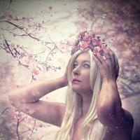 Весна :: Наталья Данченко