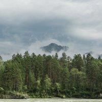Там, за туманами... :: Вадим Фогель