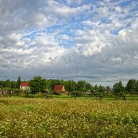 Лето в деревне :: Евгений Карский