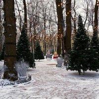 В преддверии Нового года :: Милешкин Владимир Алексеевич