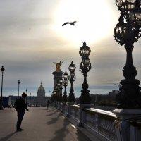 Зима в Париже :: Наталия