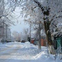 Зимняя дорога :: Татьяна Смоляниченко