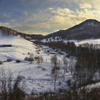 Туда, где живут маралы :: Сергей Жуков