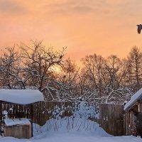 Рассвет у старого колодца, за ветхим забором :: Николай Белавин