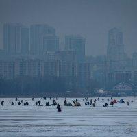 Зимняя рыбалка в Днепре :: Artem Zelenyuk
