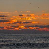 сентябрь .... вечер.... море.... :: Игорь Гарагуля