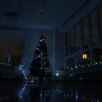 настроение праздника... :: Alexandr Staroverov