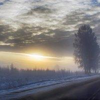 Дорога :: Александр