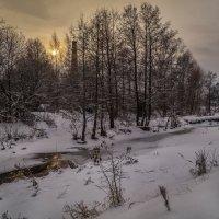 Дрезна река декабрь 2016 :: Андрей Дворников