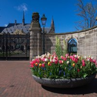 Дворец Мира в Гааге :: Валентина Харламова