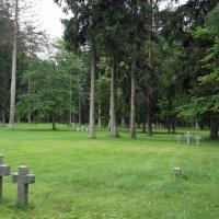 Немецкое военное мемориальное кладбище в Тойла :: Елена Павлова (Смолова)