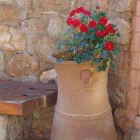 Цветок в вазе. :: Оля Богданович