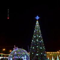 С Новым годом, Беларусь! )) :: Mitcu-Ray