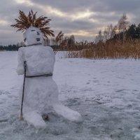 Снежный мужик :) :: Андрей Дворников