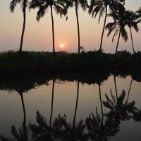 Закат на реке Sal (Индия) :: Demian